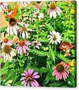 Colorful Acrylic Print by Debbie Sikes