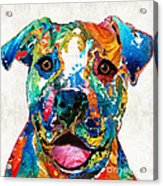 Colorful Dog Pit Bull Art - Happy - By Sharon Cummings Acrylic Print
