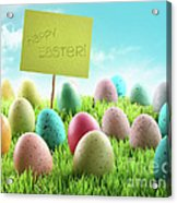 Colorful Easter Eggs With Sign In A Field Acrylic Print