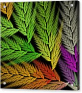 Colorful Feather Fern - Abstract - Fractal Art - Square - 1 Tl Acrylic Print