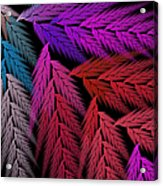 Colorful Feather Fern - Abstract - Fractal Art - Square - 4 Lr Acrylic Print