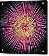 Colorful Fireworks Acrylic Print