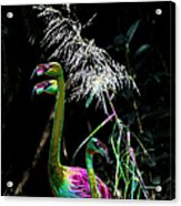 Colorful Flamingos Acrylic Print