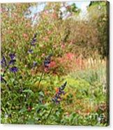 Colorful Garden In Spring Acrylic Print