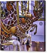 Colorful Giraffes Carrousel Acrylic Print