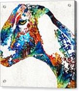 Colorful Goat Art By Sharon Cummings Acrylic Print