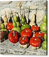 Colorful Gourds Acrylic Print