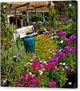 Colorful Greenhouse Acrylic Print by Amy Cicconi