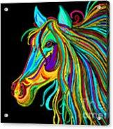Colorful Horse Head 2 Acrylic Print