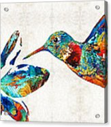 Colorful Hummingbird Art By Sharon Cummings Acrylic Print