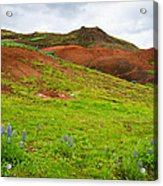 Colorful Iceland Landscape With Green Orange Brown Tones Acrylic Print