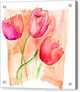Colorful Illustration Of Red Tulips Flowers  Acrylic Print
