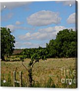 Colorful Kansas Country Pasture Acrylic Print