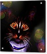 Colorful Kitty Acrylic Print