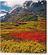 Colorful Land - Alaska Acrylic Print