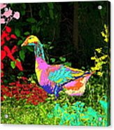 Colorful Lucy Goosey Acrylic Print