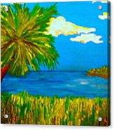 Colorful Marsh Acrylic Print