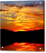Colorful Nature Acrylic Print by Jose Lopez