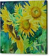 Colorful Original Sunflowers Flower Garden Art Artist K. Joann Russell Acrylic Print