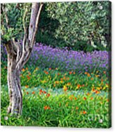 Colorful Park With Flowers Acrylic Print