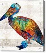 Colorful Pelican Art By Sharon Cummings Acrylic Print