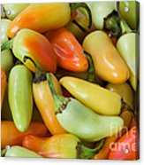 Colorful Peppers Acrylic Print by James BO  Insogna