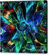 Colorful Petals Acrylic Print