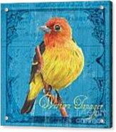 Colorful Songbirds 4 Acrylic Print