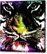 Colorful Tiger Abstract Grunge Face Acrylic Print