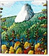 Colorful View Of Idyllwild California Acrylic Print