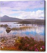 Colorful World Of Rannoch Moor. Scotland Acrylic Print
