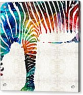 Colorful Zebra Art By Sharon Cummings Acrylic Print