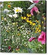 Colors In The Garden Acrylic Print