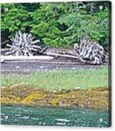 Colors Of Alaska - Layers Of Greens Acrylic Print