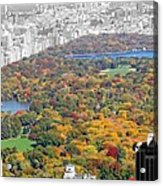 Colors Of Central Park Acrylic Print
