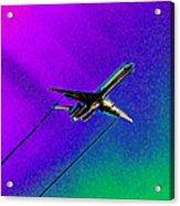 Colors Of Flight Acrylic Print