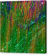 Colors Of Grass Acrylic Print