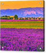 Colors Of Provence Acrylic Print