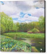 Colors Of Spring At Millbrook Marsh Acrylic Print