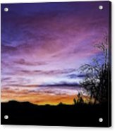 Colors Of The Night Acrylic Print