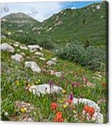 Colors Of The Rainbow - Colorado Mountain Summer Acrylic Print