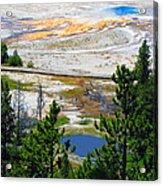 Colors Of Yellowstone Acrylic Print