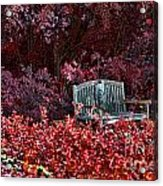 Colorspace Acrylic Print