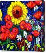Colour Cluster Acrylic Print