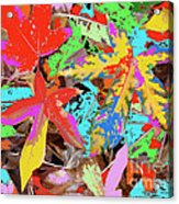 Coloured Leaves By M.l.d. Moerings  2009 Acrylic Print