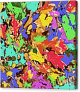 Coloured Oak Leaves By M.l.d. Moerings 2009 Acrylic Print