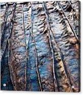 Coloured Stones Acrylic Print