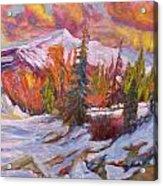 Coloured Winter Acrylic Print