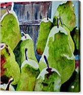 Columbus Pears Acrylic Print