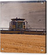 Combine Harvester And Cows Acrylic Print